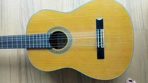 If you were buying a guitar would it be an acoustic guitar or an electric guitar.....Pic related?