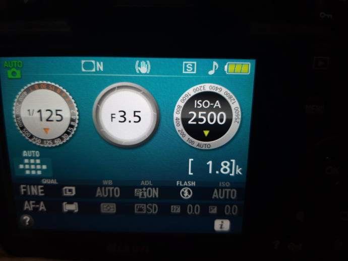 How to control the iso in d3500?