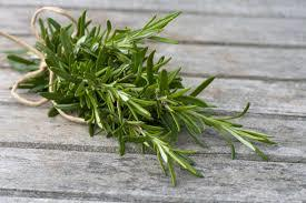 Do you like rosemary?