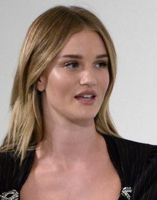 Do you find Rosie Huntington Whitley hot?
