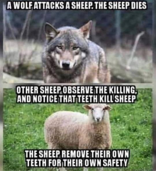 Don't you agree this is exactly how Anti-Gunners think?