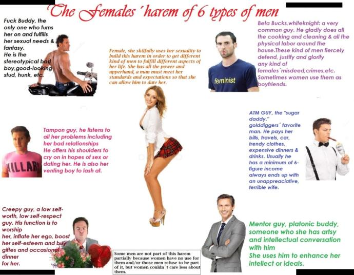 Do you agree with The Female's Harem of 6 Types of Men picture?