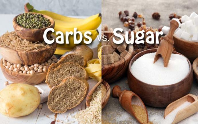 Do you really do not need carbs and sugar in your diet and only protein, dairy, fruits and veggies?