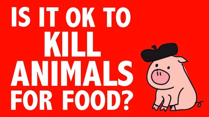 Is it okay to kill animals for food?