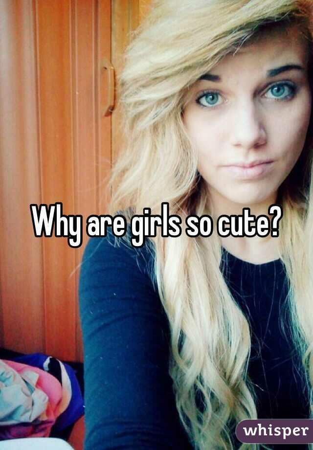 Guys, why are girls cute to you?