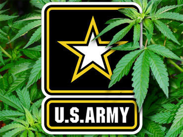 What do you think of people who serve their country and smoke marijuana?