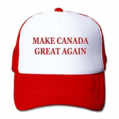 Canadians, who are you voting for and should I buy this?