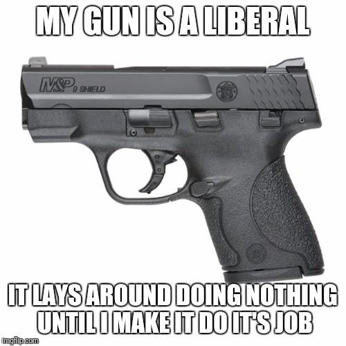 Only people who know nothing about guns are opposed to them, change my mind?