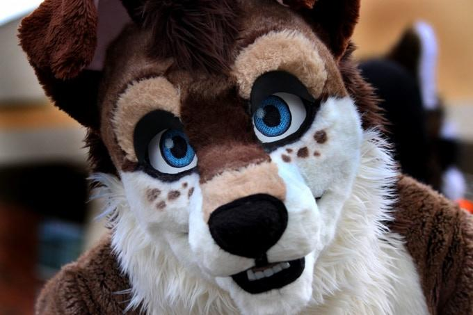 Is the Furry fandom toxic? If so, why?