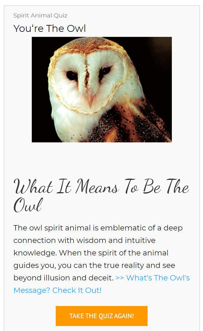 I am apparently an owl.