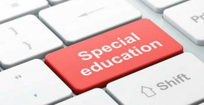 Should special needs children be sent to a special needs school or public school?