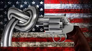 What is your opinion on gun ownership within the United States?