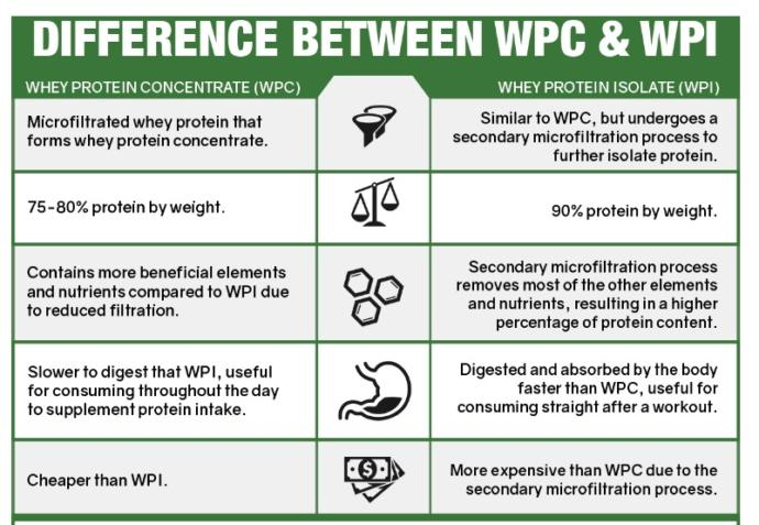 Which one is better: whey protein concentrate (WPC) OR whey protein isolate (WPI)?