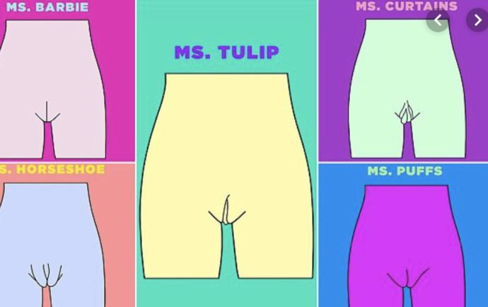 specifically the ms tulip and ms curtains