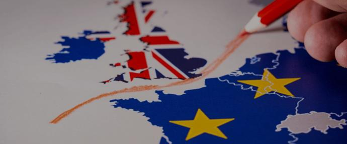 If you could resolve Brexit in one action, what would it be?