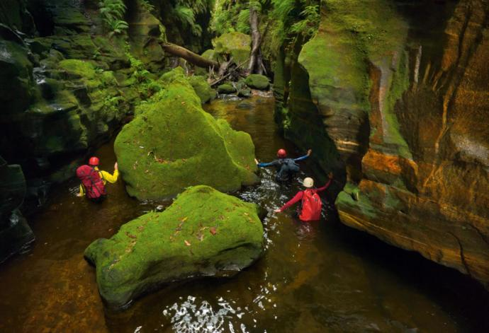 Claustral Canyon, Blue Mountains of New South Wales, Australia