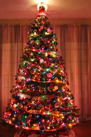 What colour are your Christmas lights on your tree?