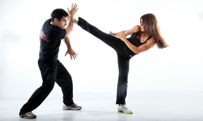 If you wanted to learn one martial art or set of combat techniques, which one or which kind would it be?