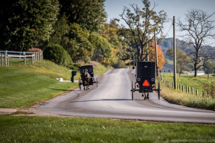 Who would go to amish country?