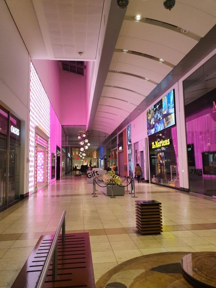 Do you like to go shopping?