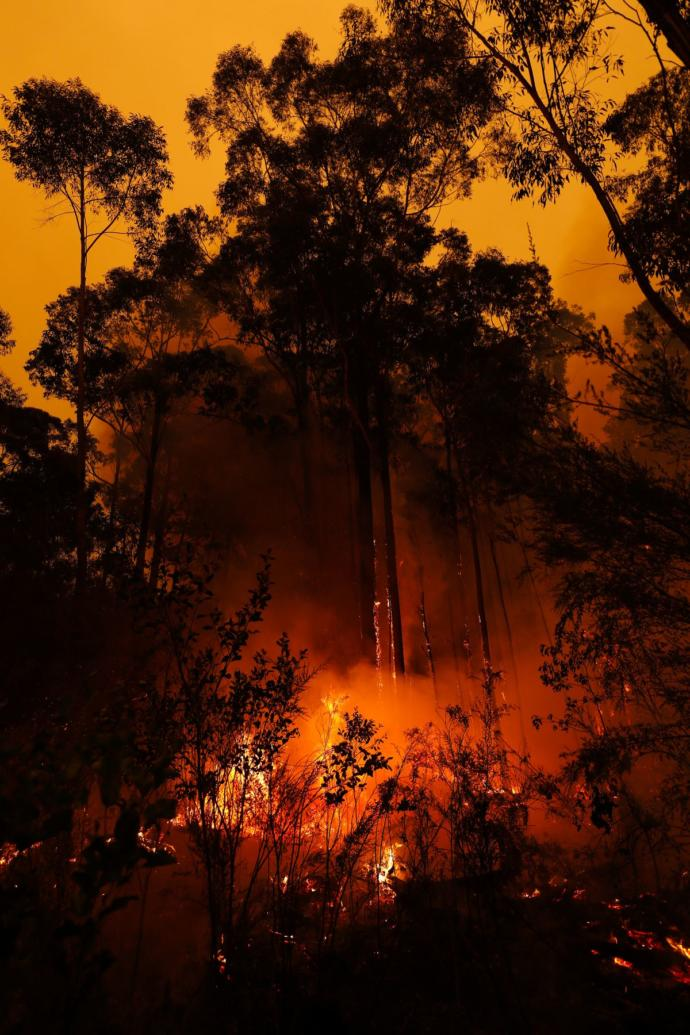 Do you know anyone affected by the Australian wildfires?