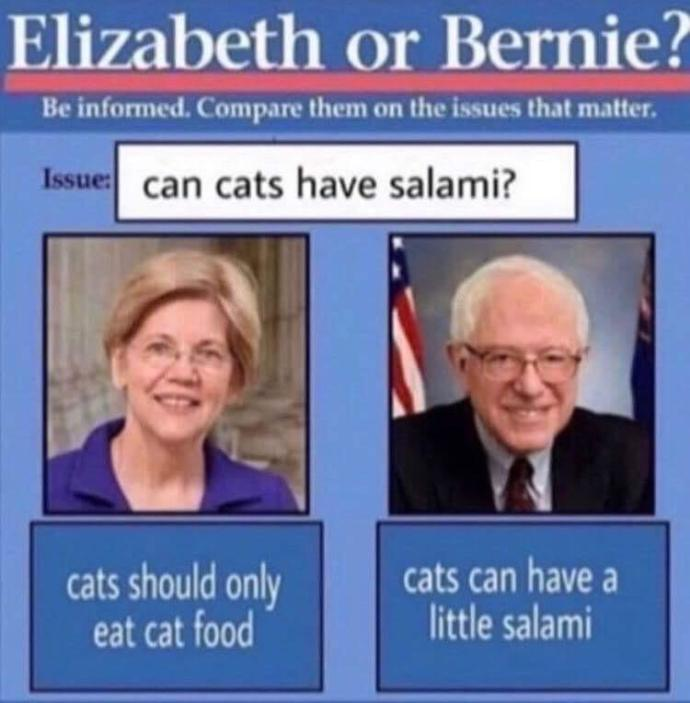 Sanders or Warren?