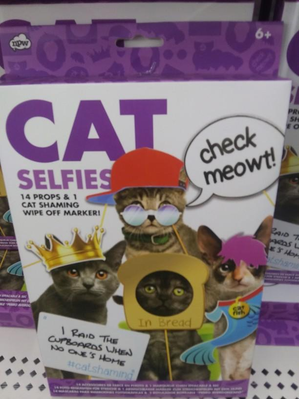 What do you think of this cat selfie kit?