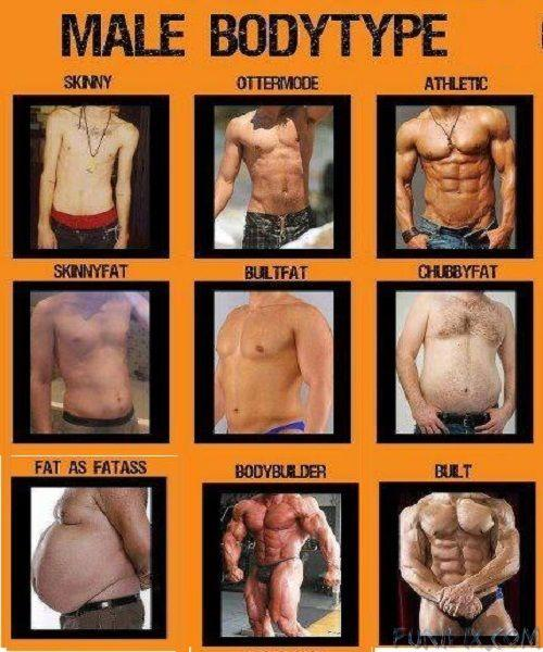 Girls, Which one of these body types do you consider to be a dad bod?