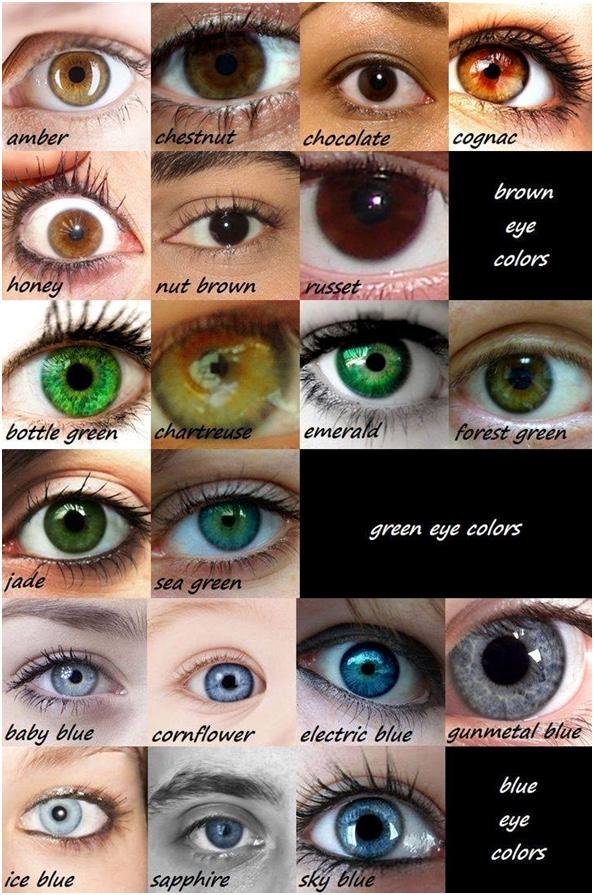 Which eye color do you find most attractive?