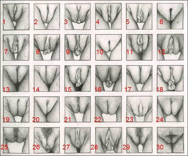 Girls, care to share your flower type?