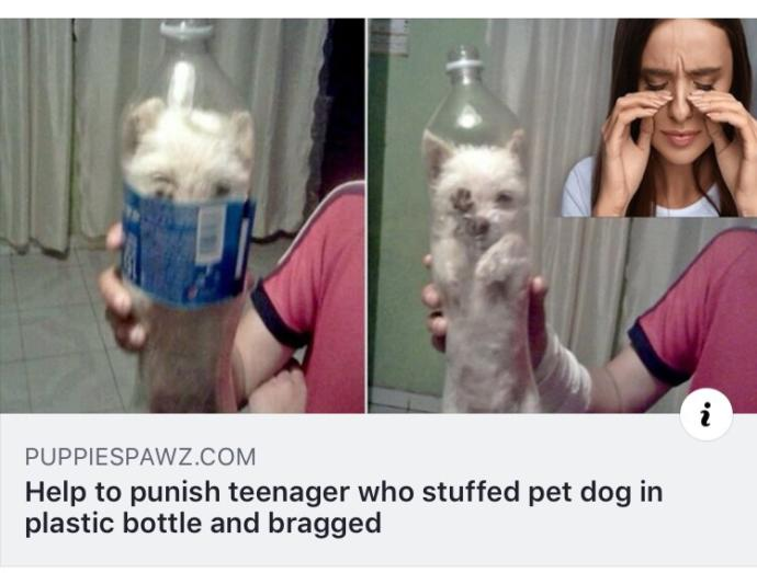 How did this teen boy fit his dog into such a small bottle?