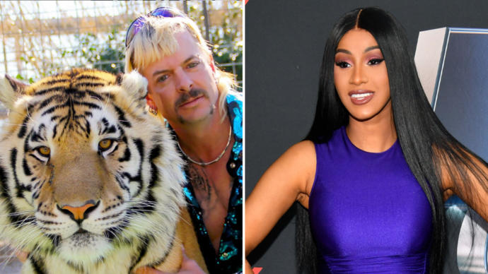 Do you think Cardi B is an idiot for trying to get Joe Exotic out of prison?