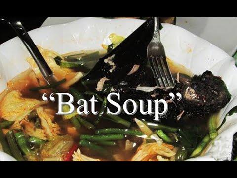 Did you know that Covid-19 came from the Chinese Wet Market serving Bat Soup?