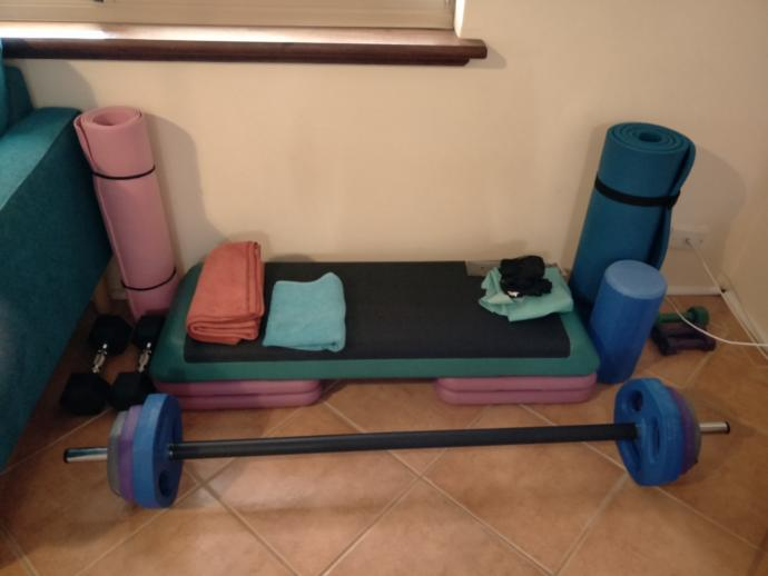 I panic bought weights while everyone else was panic buying toilet paper