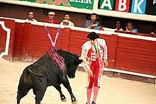 Should bullfighting be legal or illegal?