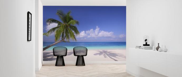 I live on an Island Paradise Mon are you jealous that the Corona virus has left us untouched Arent you jealous mon?