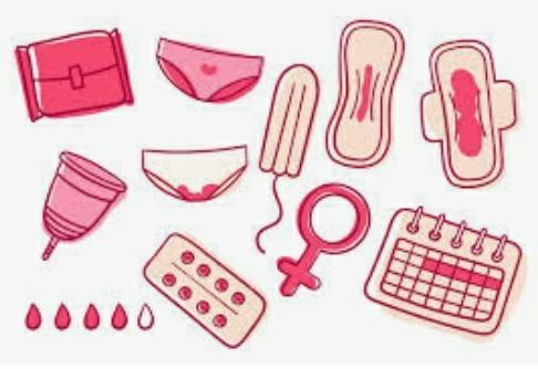 Ladies & Trans Men, What Is/Was Your Go To Menstrual Product? Which Are The Most Popular?