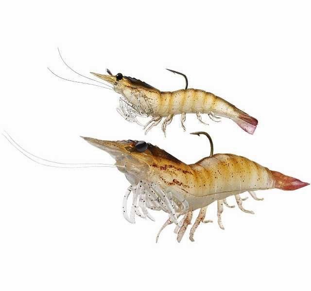 seabug