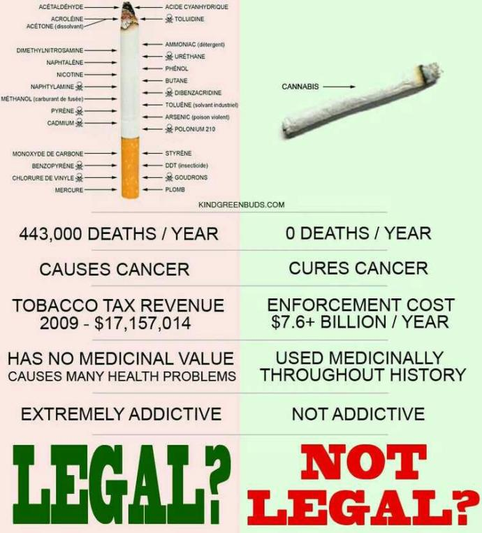 Do you think that after a few years marijuana becomes fully legal? have you tried it? If you havent tried it why havent you? are u for or against?