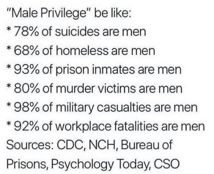 True or false, The following is proof that male privilege does not exist?