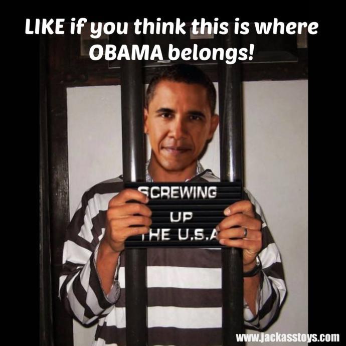 Should Barack Obama be put to jail?