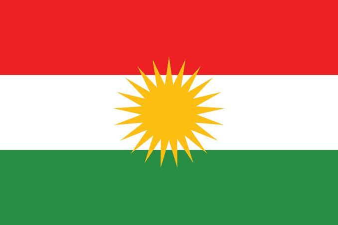 Kurdistan flag/ kurdish