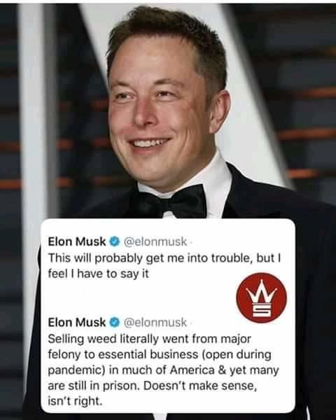 What are your thoughts on Elon Musks comments about weed?