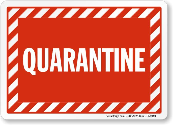 What do you do most of the time during the quarantine period?