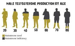 Do you think based on your personal health that have you abnormally high, low or normal healthy testosterone levels and what you think its causing it?