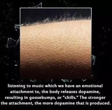 Have your ever had happy excited goosebumps before?