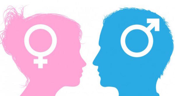 Do you understand men or women better?