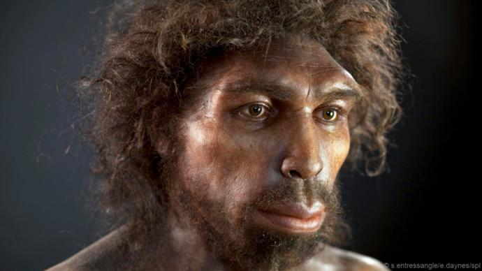 Do you think we should bring back Neanderthals if science is capable of doing so?