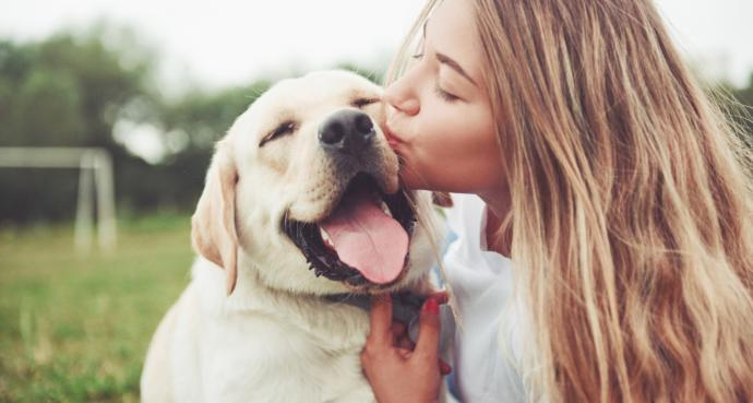 Who do you love more: Dogs or humans?
