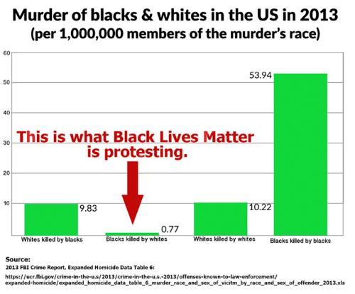 Media blackout on murders by BLM activists?